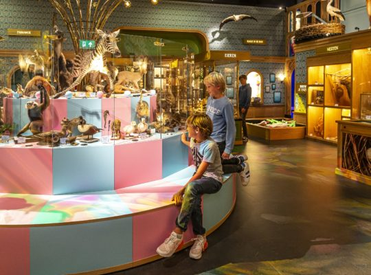 Naturalis: see, do and experience