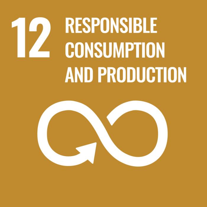12. Verantwoorde consumptie en productie